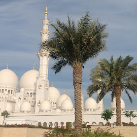 Grand Mosque Abu Dhabi by Mary Dayton - Travel Locations Landmarks