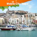 Ibiza Street Map icon