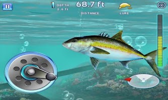 Screenshot of Fishing Ace Catch