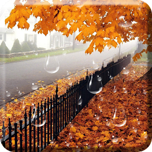 autumn live wallpaper pro apk