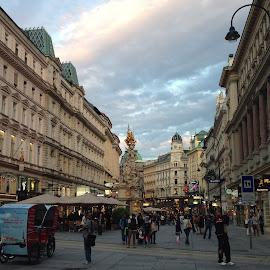 Wien by Kseniya Maksimenko - City,  Street & Park  Street Scenes ( street, architecture )