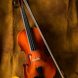 For music of souls by Rakesh Syal - Artistic Objects Musical Instruments (  )