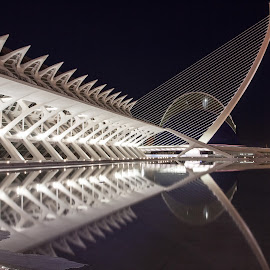 Reflection by Jorge Igual - Buildings & Architecture Other Exteriors ( water, building, night, museum, valencia )