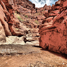 Canyon in moab by Meghann Bothe - Landscapes Caves & Formations ( canyon )