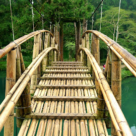 Brown - Green by Natalie Spark - Buildings & Architecture Bridges & Suspended Structures ( turquoise water, green, lake, bamboo bridge, bridge )