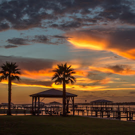 Sunset over Lake by Fonda Thomas - Landscapes Sunsets & Sunrises ( clouds, sunset, palm trees, skies )
