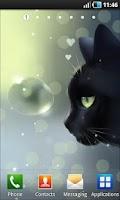 Screenshot of Curious Cat