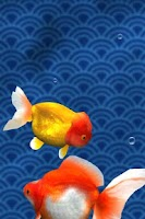 Screenshot of Gold Fish 3D Live Wallpaper