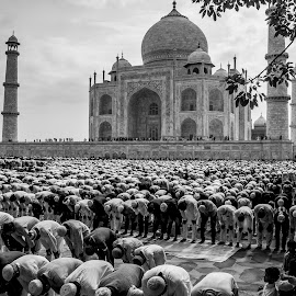 Tajmahal on Eid by Harsh Agarwal - Buildings & Architecture Statues & Monuments ( tajmahal, tajmahal on eid, taj on eid )