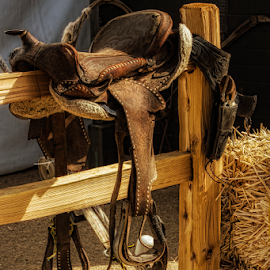 Saddle Up! by Fred Herring - Artistic Objects Other Objects