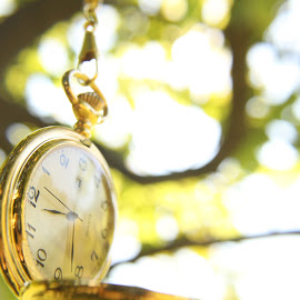 by Aires Spaethe - Artistic Objects Clothing & Accessories ( time, pocket watch, tree, watch, trees, gold, close up, golden, object )