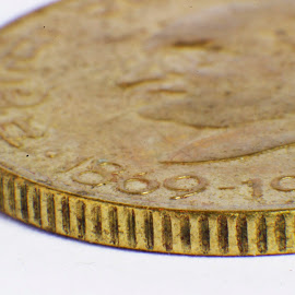 Gold Coin 1869 INDIA by Glinson Aj - Novices Only Macro