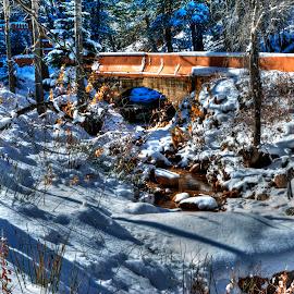 The Bridge of Winter  by James Martinez - Buildings & Architecture Bridges & Suspended Structures