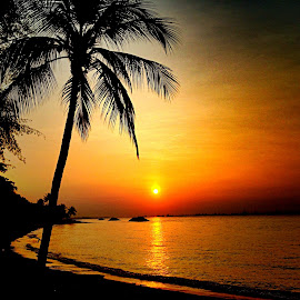 Sunrise walk by Janette Ho - Instagram & Mobile iPhone (  )