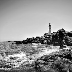 Head Light Portland Maine by Kirsi Bertolini - Black & White Landscapes