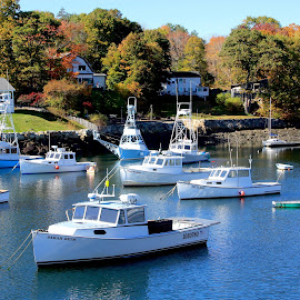 Respite by Sandie Lawler - Novices Only Objects & Still Life ( ogunquit, perkins cove, maine, autumn, boats, 2014 fall )