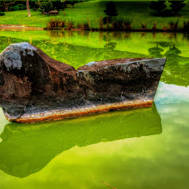 Roca sobre el Lago by Jose German - Nature Up Close Rock & Stone ( love, reflection, rock, leaves, river )