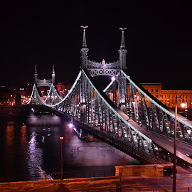 Liberty Bridge Budapest by Istvan File - Buildings & Architecture Bridges & Suspended Structures ( lights, hungary, budapest, night, liberty bridge, danube )