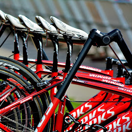 Ready to Roll by Erin Czech - Transportation Bicycles ( bicycles, red, racing, wheels, seats )