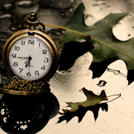 by Dipali S - Artistic Objects Jewelry ( single object, oak leaves, clockwise, clock face, chrome, dial, equipment, jewelry, leaf, pocket watch, time, autumn, metal, timer, instrument of time, minute hand, isolated, clockworks, clock, elegance, watch, close-up, instrument of measurement, luxury, concepts and ideas, fall, man made object, accuracy, second hand, tachymeter, object )