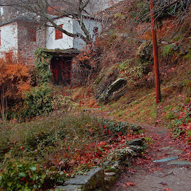 Makrinitsa by Stratos Lales - City,  Street & Park  Neighborhoods ( old, winter, door, pelion, leaves )