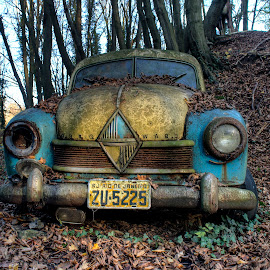 fading in nature by Greg Warnitz UE - Transportation Automobiles ( car, urban, nature, decay, abandoned )