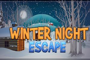 Screenshot of Winter Night Escape