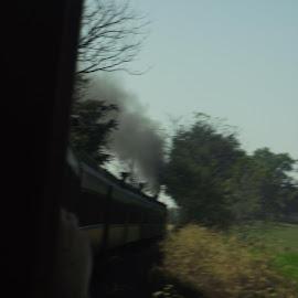 Spooky  by Anna Tripodi - Transportation Trains