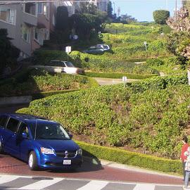 Lombard Street by Holly Herrmann - City,  Street & Park  Street Scenes ( san francisco )