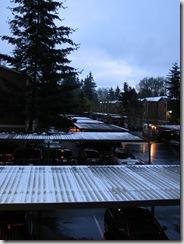 Spring Snow 2 019