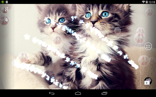 Screenshot of Cute Cat Live Wallpaper