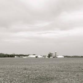 At the farm by Leanne Ahler - Landscapes Prairies, Meadows & Fields