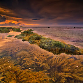 Ebb and flow by Eris Suhendra - Landscapes Sunsets & Sunrises ( clouds, waterscape, indonesia, sunset, beautiful, seaweed, sunrise, seascape, beach, landscape, nikon )
