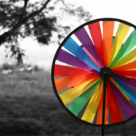 Rainbow Wheel by Reiner Locsin - Artistic Objects Other Objects ( wheel, color, pinwheel, rainbow, windmill, colors, landscape, portrait, object, filter forge )