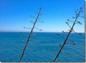 mar cruzado [1024x768]