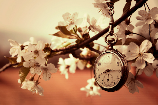 Spring time by Sabina Horvat - Artistic Objects Antiques Stock Photos on Pixoto