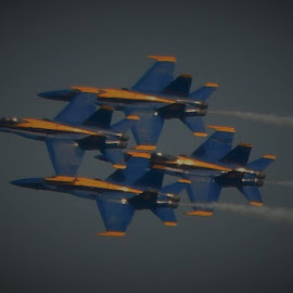 blue angles  by Lavonne Ripley - Transportation Airplanes
