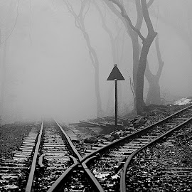 Disappeariing way by Haresh Patel - Transportation Trains