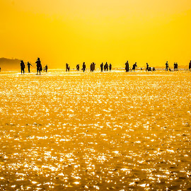 The Comedians by Jayanta Basu - Landscapes Beaches ( water, silhouette, sea, india, light, people,  )