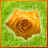 Flore icon