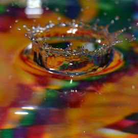 water drop by Robin Fitzgerald - Abstract Macro
