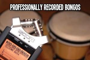 Screenshot of Bongos - Dynamic Drums