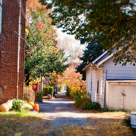 A Less Traveled Road by Kristin Klein - City,  Street & Park  Neighborhoods