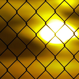 Fenced in is a State of Mind. by Jodie Buschman - Abstract Patterns