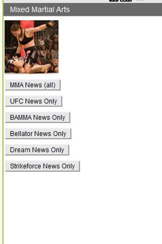 MMA Beatdown