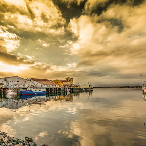 Boat harbour by Benny Høynes - Landscapes Waterscapes ( water, harbour, boats, sea, sun, norway )
