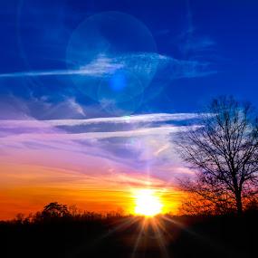 Colorful sunset by RomanDA Photography - Landscapes Sunsets & Sunrises ( orange, red, sky, purple, blue, sunset, trees )