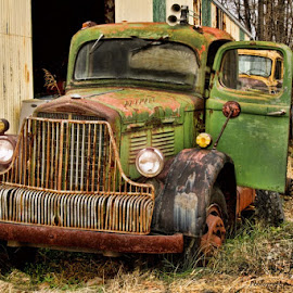 Truck of Long Ago by Diane Hollister Carrigan - Transportation Automobiles ( rusting truck, truck )