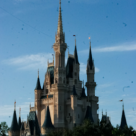 Happiest Place on Earth by Delaney Franke - Buildings & Architecture Other Exteriors ( blue sky, disney world, magic kingdom, castle, picture perfect )