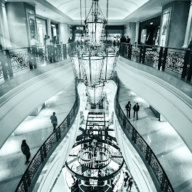 Dior by Oliver  Gellongos - Buildings & Architecture Other Interior ( macao, dior, brand, places, shopping, mall )